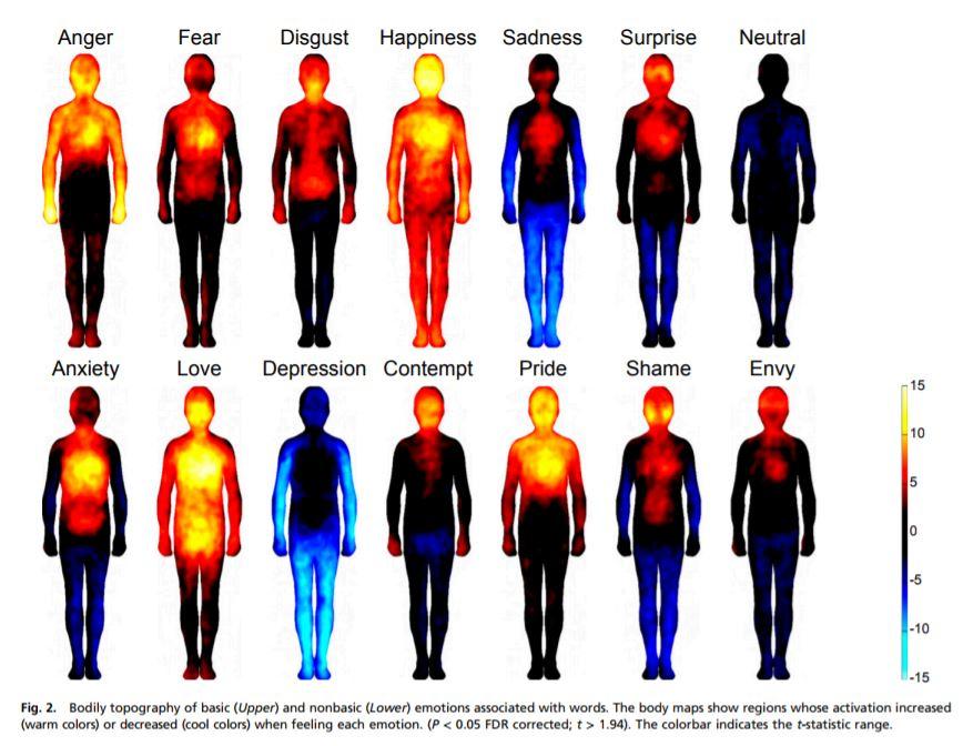 emotions1n-1-web